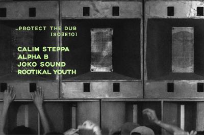 Protect the Dub [S03E10]